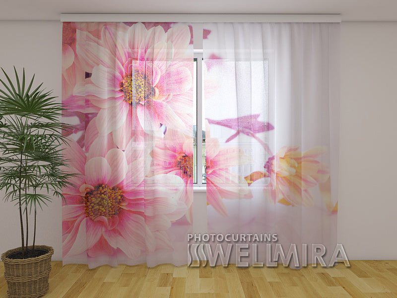 Photo Net Curtain Pink Gerberas - Wellmira
