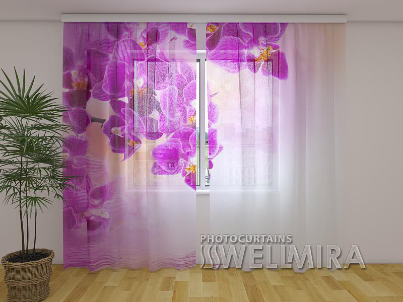 Photo Net Curtain Raspberry-red Tenderness - Wellmira
