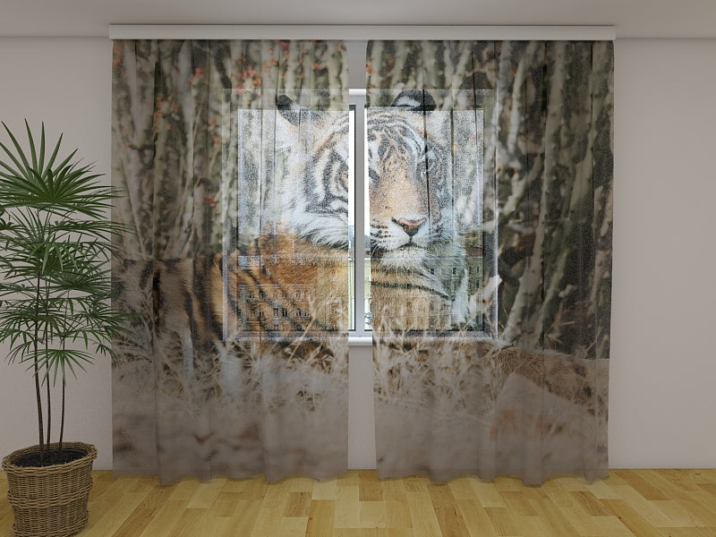 Photo Curtain Tiger Shayari