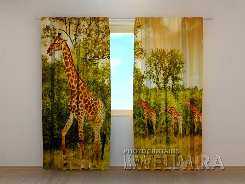 3D Curtain Giraffes - Wellmira