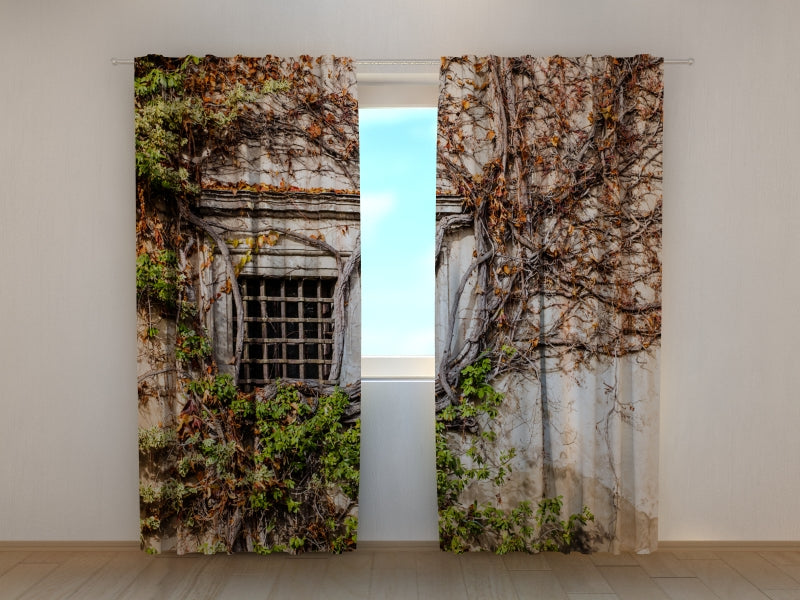 Photo Curtain Green Wall of Beauty Old Palace - Wellmira