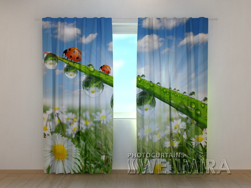 3D Curtain Ladybirds in Camomiles - Wellmira