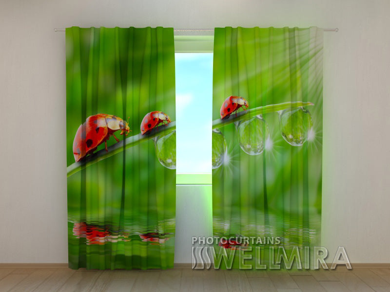 3D Curtain Ladybirds - Wellmira