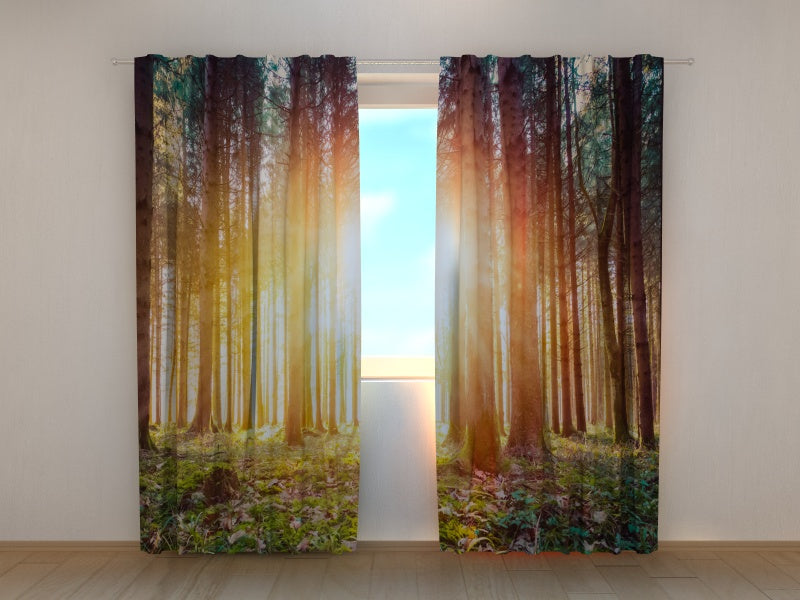 Photo Curtain Magical Sunset in the Woodland