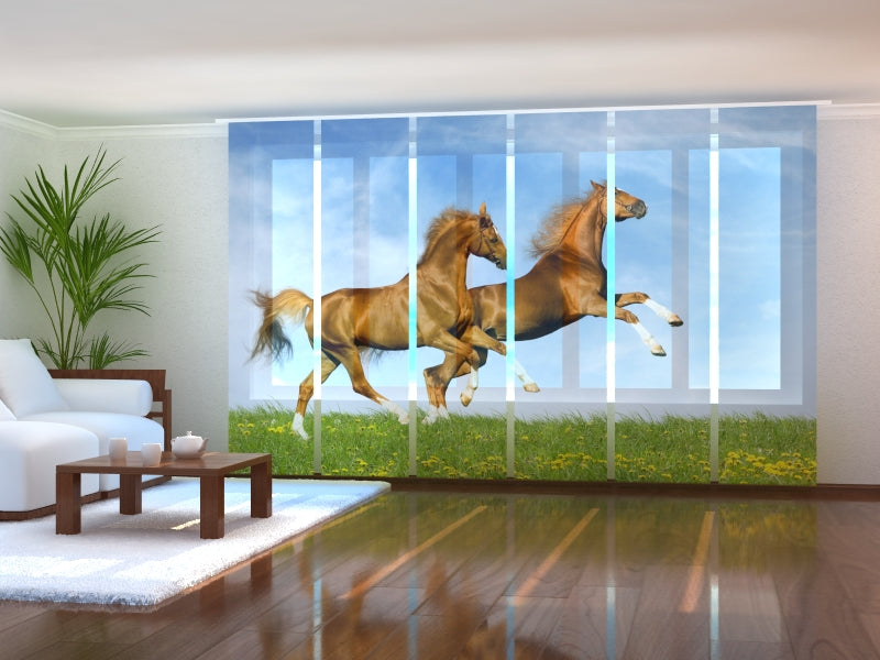 Set of 6 Panel Curtains Fast Horses