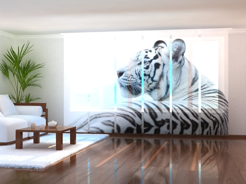 Set of 6 Panel Curtains White Tiger 2