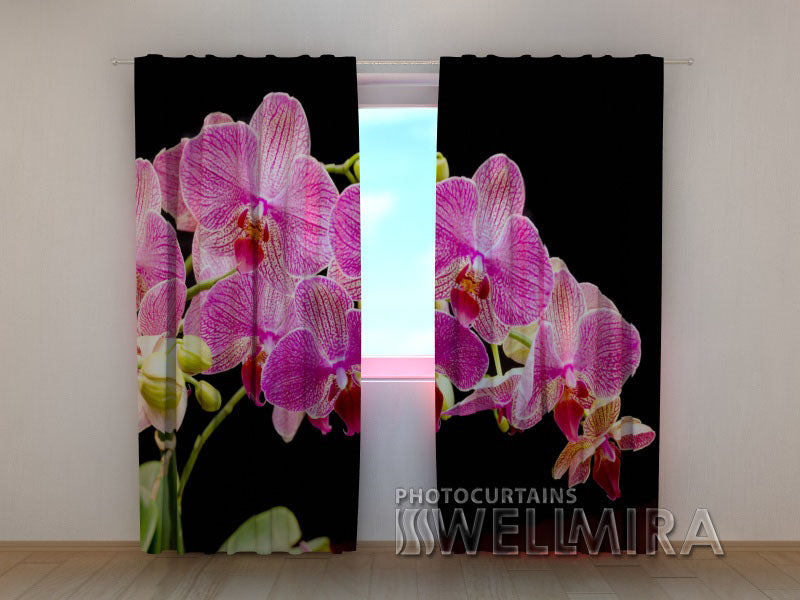 Photocurtain Pink Delight - Wellmira