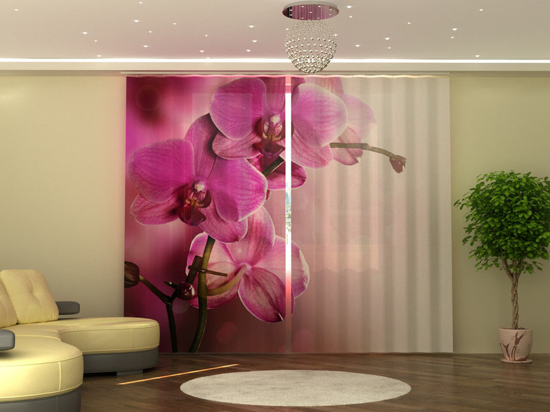 Photo-curtain Purple Orchid W290xH250 cm - Wellmira