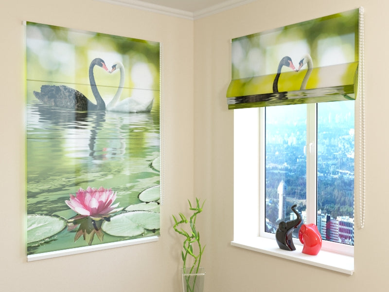 Roman Blind Black and White Swans