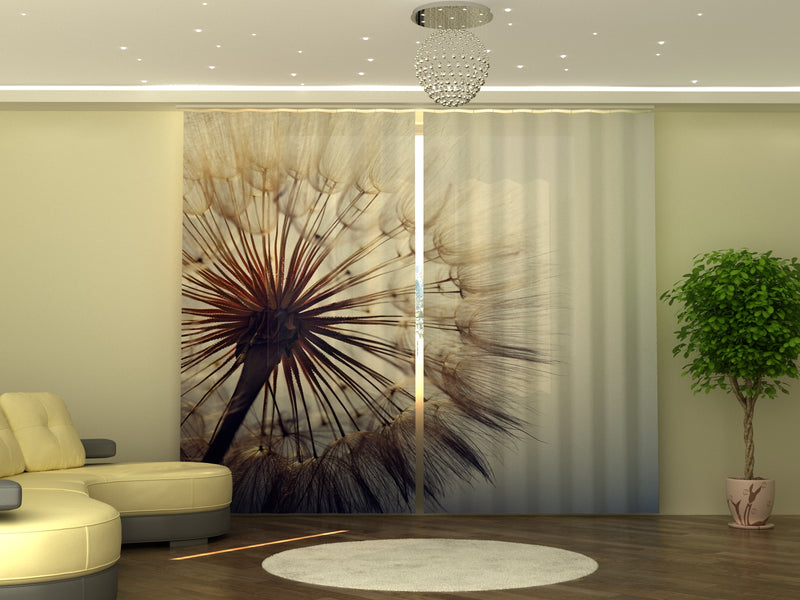 Photo-curtain Amazing Dandelion W290xH245 cm