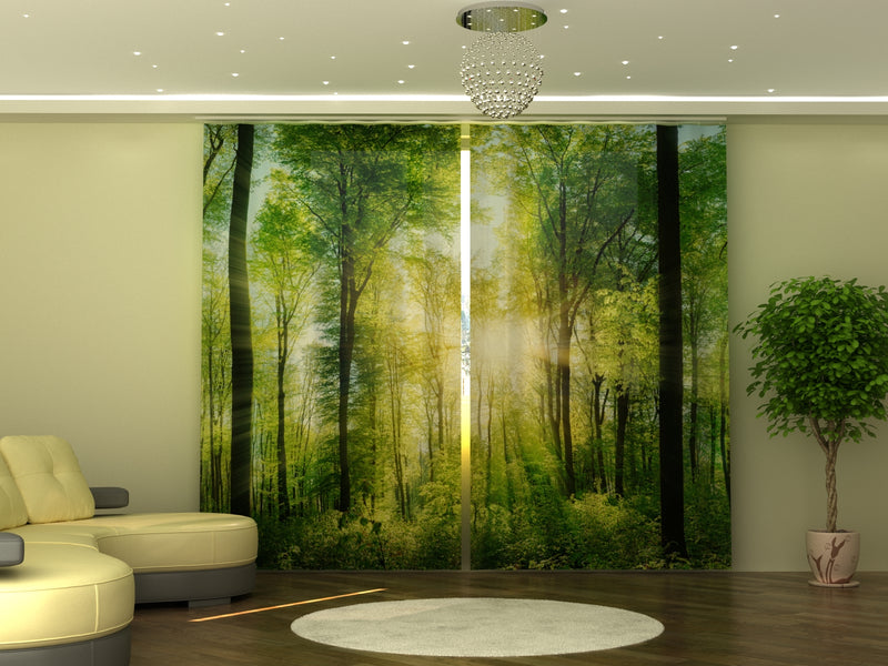 Photo-curtain Sun Rays W290xH245 cm