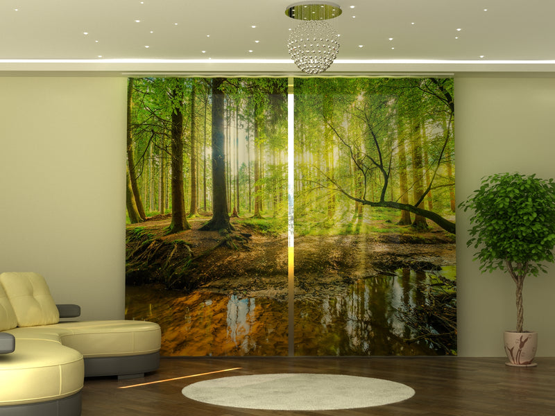 Photo-curtain Sunbeams in the Forest W290xH245 cm