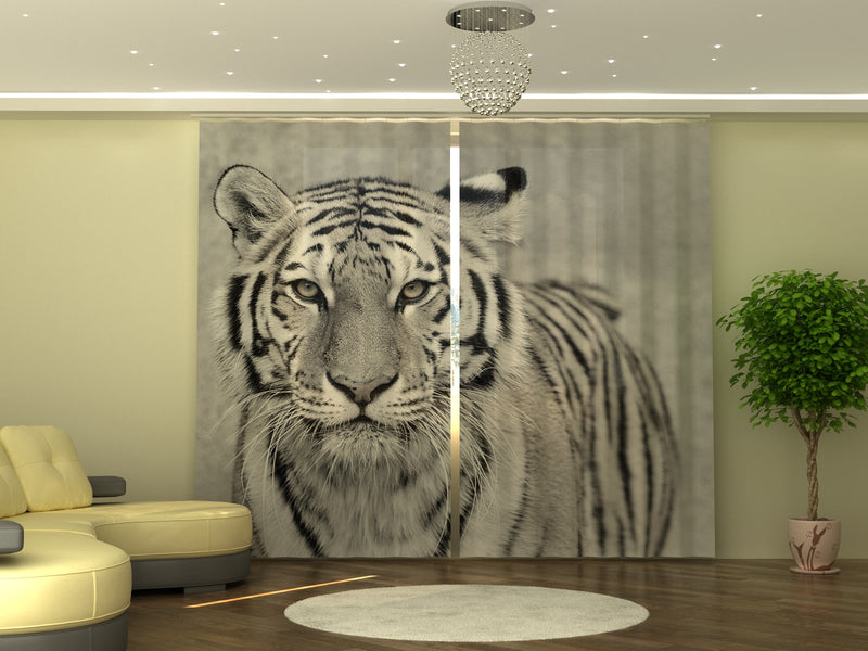 Photo-curtain White Tiger W290xH245 cm