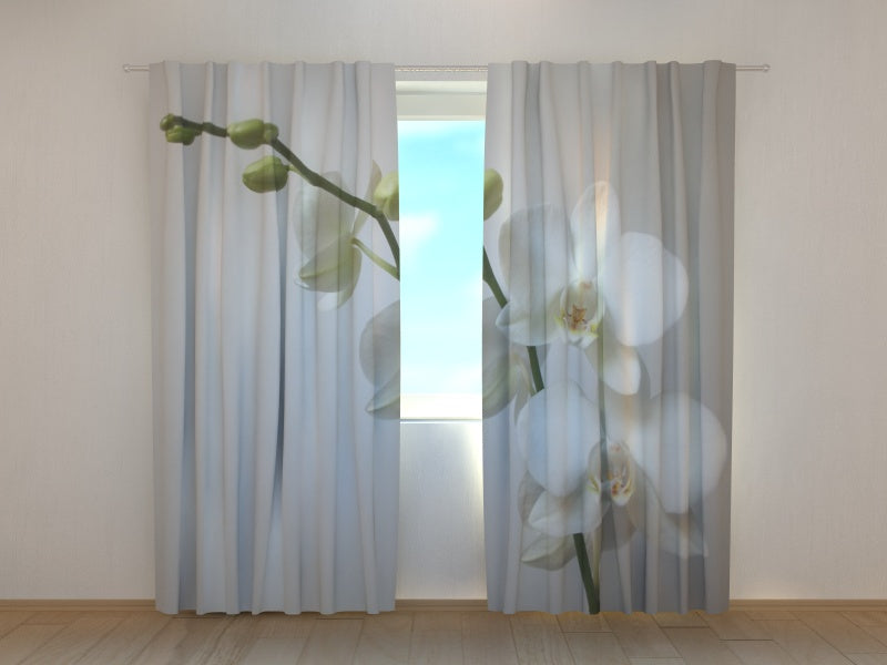 Photo Curtain Riga Orchid