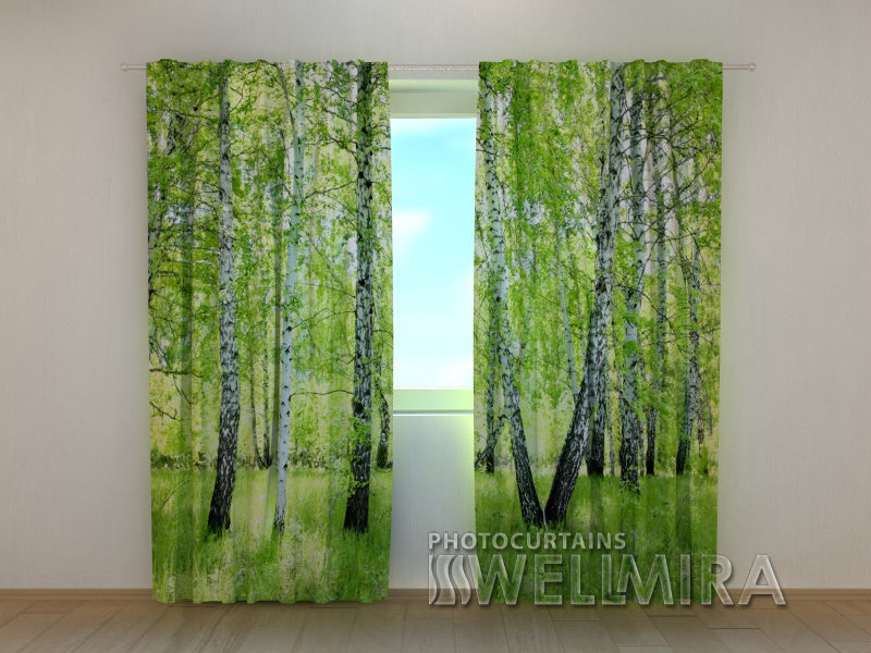 Photo Curtain Summer Birch Forest - Wellmira