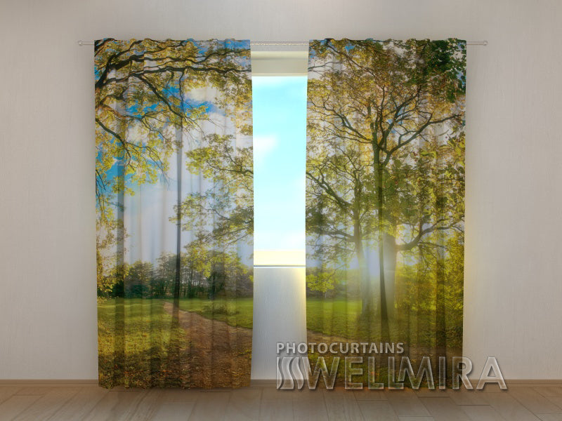 Photo Curtain Sun in the Park - Wellmira