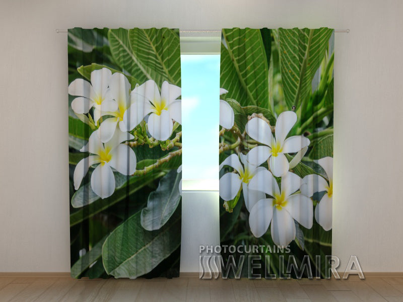 3D Curtain Tropical Shrub - Wellmira
