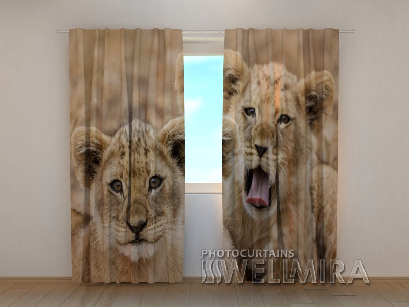 3D Curtain Two Lion Cub - Wellmira