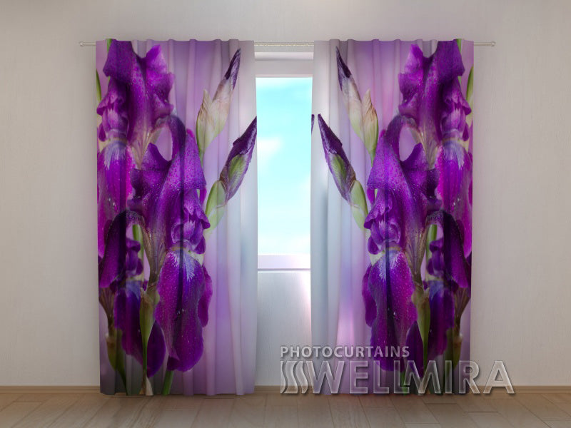 Photo Curtain Velvet Irises - Wellmira