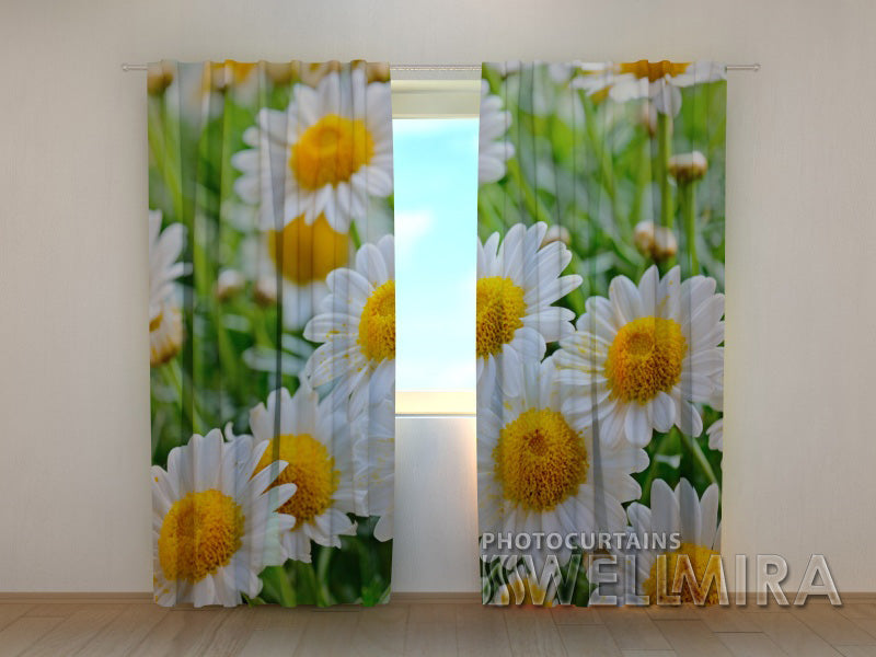3D Curtain White Camomiles - Wellmira