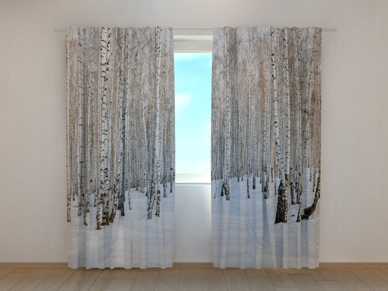 Photocurtain Winter Birch Forest - Wellmira
