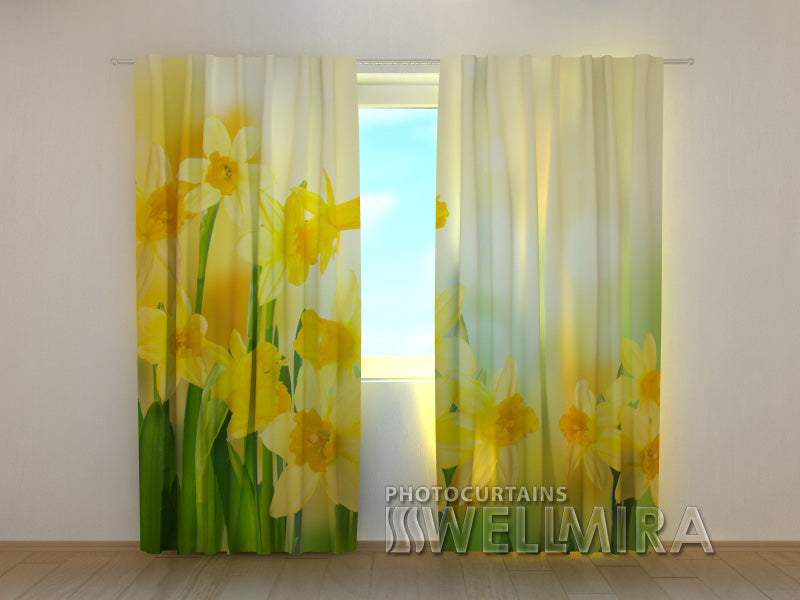 Photo Curtain Yellow Narcissi