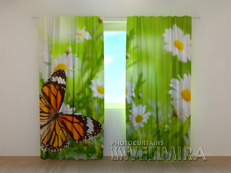 3D Curtain Butterfly and Camomiles - Wellmira
