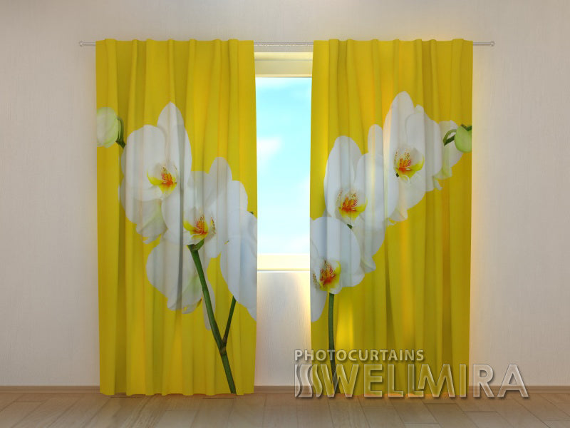 Photocurtain White Orchids - Wellmira
