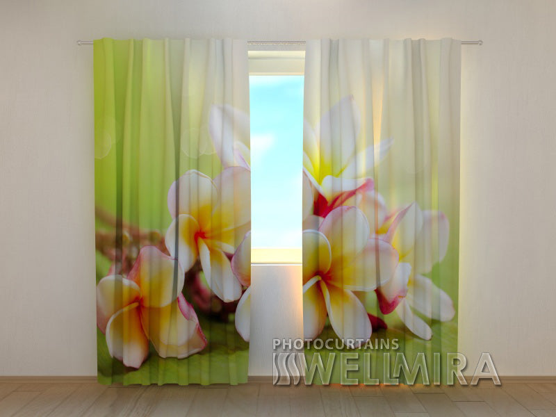 Photo Curtain Spring Flowers - Wellmira