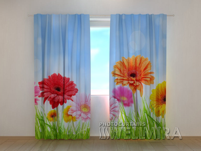3D Curtain Bright Gerberas - Wellmira