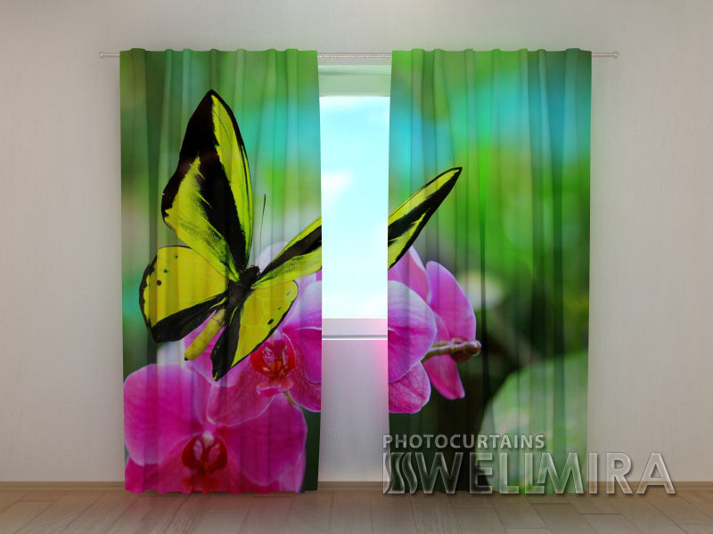 Photocurtain Bright Colours - Wellmira