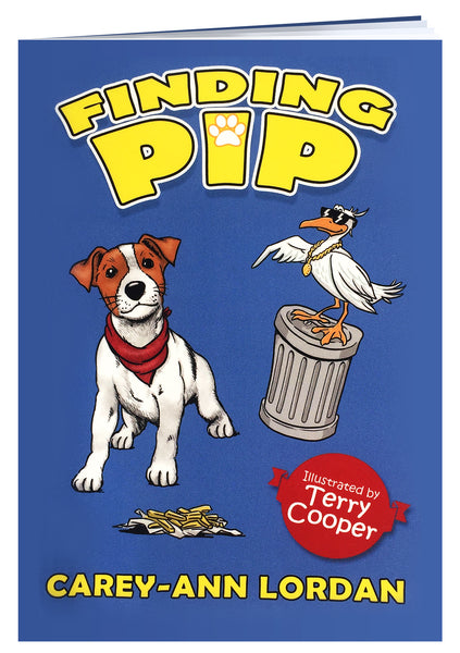 Finding Pip
