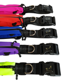No shock Hands Free Bungee Leash outlasts Ezy Dog and Ruff wear for running and walking made by TailRunner (Tail Runner)
