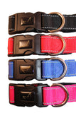 Quick Drying Neoprene Lined Dog Collars