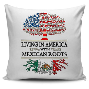 Living in America With Mexican Pillow Covers !