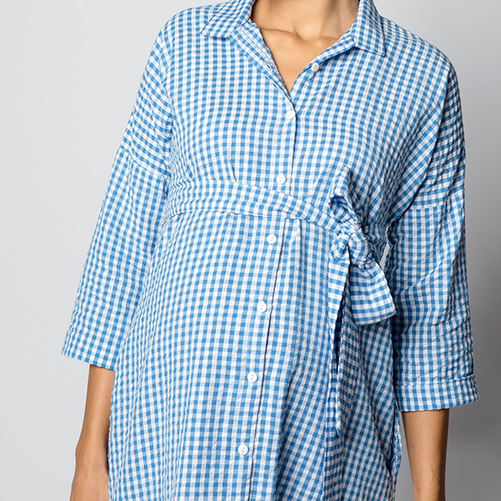 Maternity-Dresses-Cayo-Shirt-Dress-Blue-Gingham-Checks-Image3
