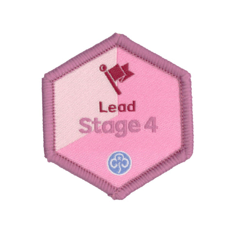 Skills Builder - Skills For My Future - Lead Stage 4 Woven Badge