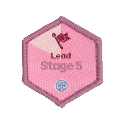 Skills Builder - Skills For My Future - Lead Stage 5 Woven Badge