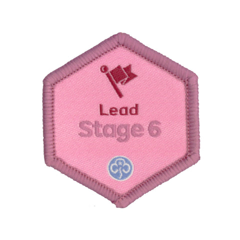 Skills Builder - Skills For My Future - Lead Stage 6 Woven Badge