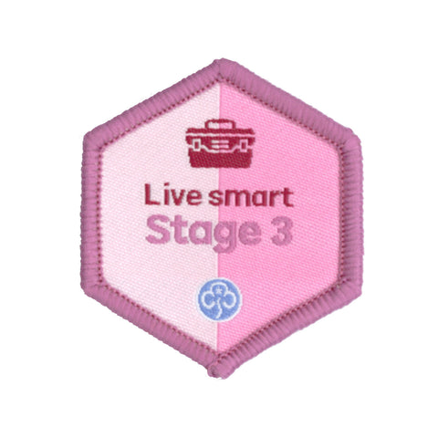 Skills Builder - Skills For My Future - Live Smart Stage 3 Woven Badge