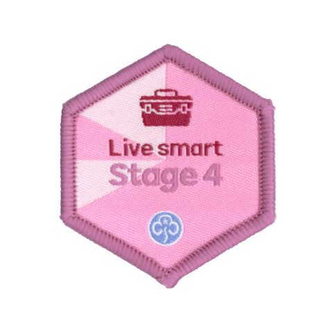 Skills Builder - Skills For My Future - Live Smart Stage 4 Woven Badge