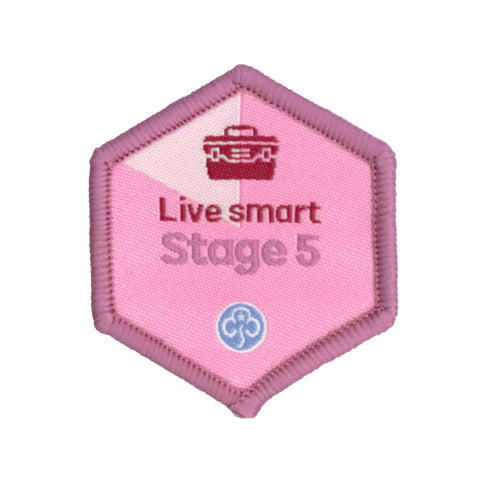 Skills Builder - Skills For My Future - Live Smart Stage 5 Woven Badge