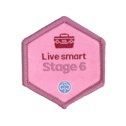 Skills Builder - Skills For My Future - Live Smart Stage 6 Woven Badge