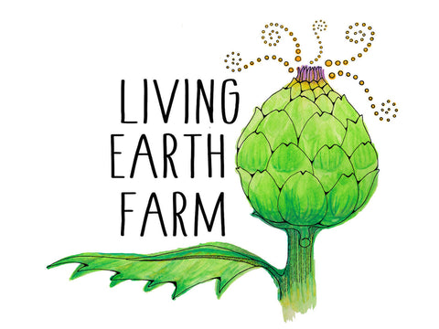 Falani's design for our farm's logo