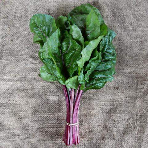 Red Stemmed Silverbeet - bunch