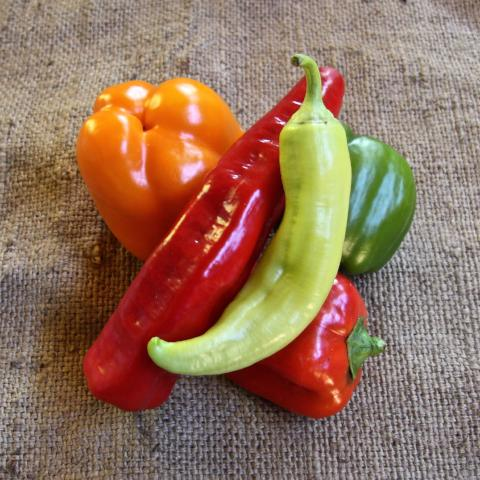 Mixed Sweet Capsicums - 500g