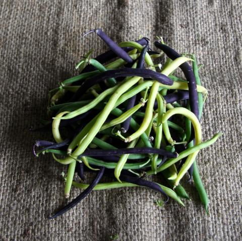 French Beans - 250g