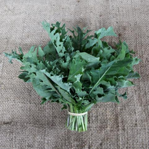 Kale Mix - bunch