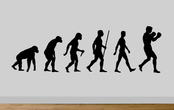 Evolution Ape To Man Boxing Evo Wall Sticker Decal Gym Art