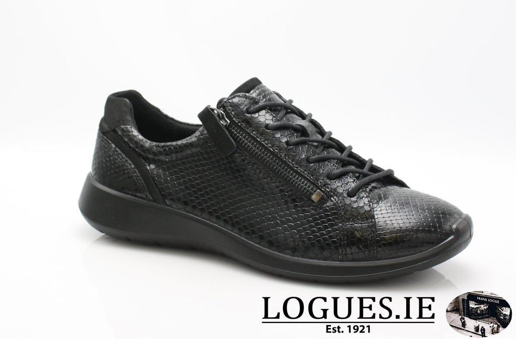 ECC 283073LadiesLogues Shoes51707 / 36